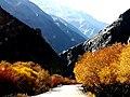 Fall in Hunza-basraa-17.jpg