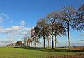 Falmignoul Countryside R05.jpg