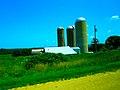 Farm with Three Silos - panoramio (7).jpg