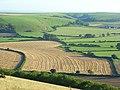 Farmland, Kingston Deverill - geograph.org.uk - 539211.jpg