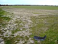Farmland north of the road to Steventon, Oxfordshire - geograph.org.uk - 362370.jpg