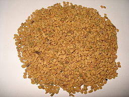 Fenugreek seed.JPG