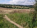 Field near Lufton - geograph.org.uk - 541018.jpg