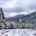 First Snowfall near Augusta, MT (15063879129).jpg