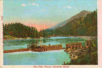 Fish wheel - A hand-tinted postcard of a fish wheel on the lower Columbia River around 1910.