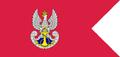 Flaga Marynarki Wojennej.PNG