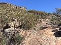 Flinders Ranges SA 5434, Australia - panoramio (176).jpg