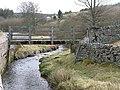Footbridge over the River East Allen - geograph.org.uk - 721782.jpg
