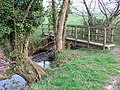 Footbridge over the River Sid - geograph.org.uk - 380448.jpg