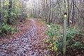 Footpath junction on High Weald Landscape Trail - geograph.org.uk - 1593460.jpg