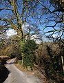 Footpath leaving lane near Lustleigh - geograph.org.uk - 1764105.jpg