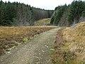 Footpath on Mynydd Blaenrhondda - geograph.org.uk - 1004348.jpg