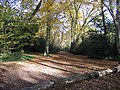 Footpath through Highams Park - geograph.org.uk - 605264.jpg