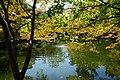 Fort Worth Japanese Garden October 2019 13.jpg