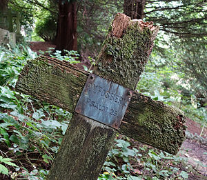 George Fosbery - Detail of Fosbery's grave, Smallcombe Cemetery, Bath
