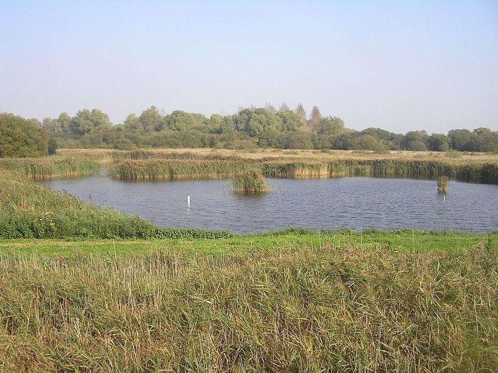 Fowlmere Nature Reserve