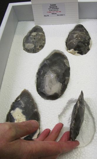 Prehistoric Britain - Boxgrove handaxes at the British Museum