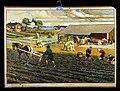 Freka Ålander - Autumn agriculture.jpg