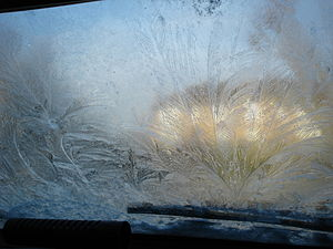 Frost patterns on a car windscreen