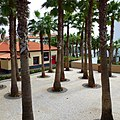Funchal, Madeira - 2013-01-05 - 85551666.jpg
