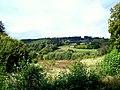 GONZERATH - panoramio (5).jpg