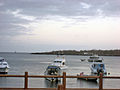 Galapagos2007--36--08-23-07.JPG