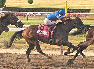 Game On Dude - Image: Game On Dude Belmont 2010