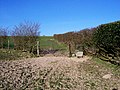 Gate on Bridlepath - geograph.org.uk - 396341.jpg