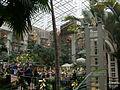 Gaylord Opryland Cascades Atrium 2003.JPG