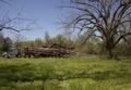 Gee's Bend, Alabama LCCN2010638612.tif