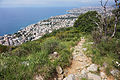 Genoa - trail 2.jpg