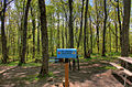 Gfp-michigan-mount-arvon-mailbox-registration-at-the-high-point.jpg