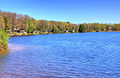 Gfp-michigan-twin-lakes-state-park-curving-shoreline.jpg