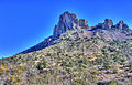 Gfp-texas-big-bend-national-park-peak-in-the-distance.jpg
