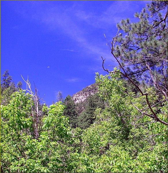 File:Ghost Moon over Oak Creek Canyon, AZ 7-30-13 (9511792314).jpg