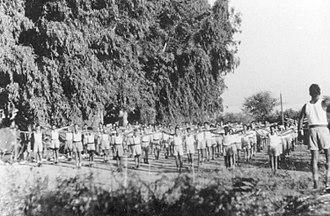 Ginosar - Palmach, 11th Company, doing morning exercises at Ginosar, 1947
