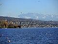 Glärnisch - Zürichhorn - Zollikon - Pfannenstiel - Zürichsee - Arboretum Zürich 2014-01-28 16-05-09 (P7700).JPG