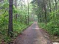 Glassberg Trail.JPG