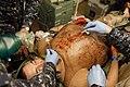 Global Medic 15 150614-A-GA303-008.jpg