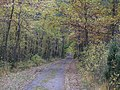 Gmina Strachówka, Poland - panoramio (8).jpg