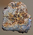 Gold on matrix (Donald R. Tunnel, Gold Hill, Boulder County, Colorado, USA) (17202962402).jpg