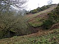 Gorge in Spango Valley - geograph.org.uk - 1216590.jpg