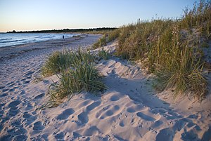 Gotland, Sweden (6639711325).jpg