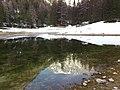 Grüner See - Spiegelung - panoramio (1).jpg