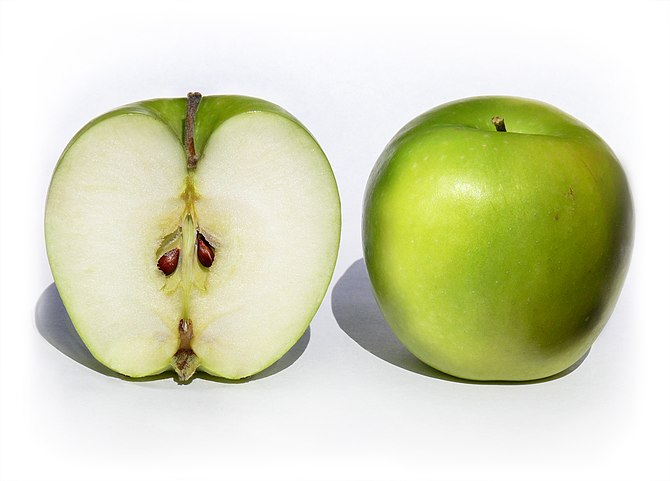 A pair of Granny Smith apples Malus x. domesti...