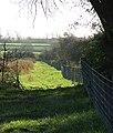 Grassy Track - geograph.org.uk - 79973.jpg