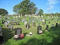 Graveyard at St Mary's Church - geograph.org.uk - 2109507.jpg