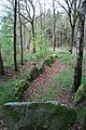 Großsteingrab Bockraden 02.jpg
