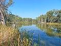 Gunbower Creek canoeing area in Gunbower National Park.jpg