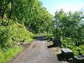 Gunks Traps - Carriage road.jpg